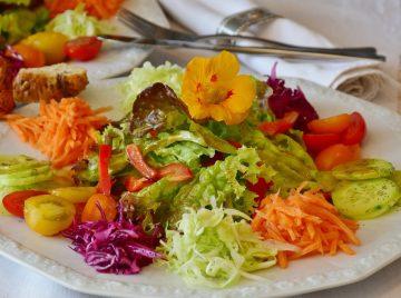 Tallar cocina vegana